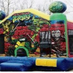 Ninja Turtle - 13' X 13' moonbounce