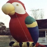 Advertising Balloon - Polly the Parrot - 25' Cold Air